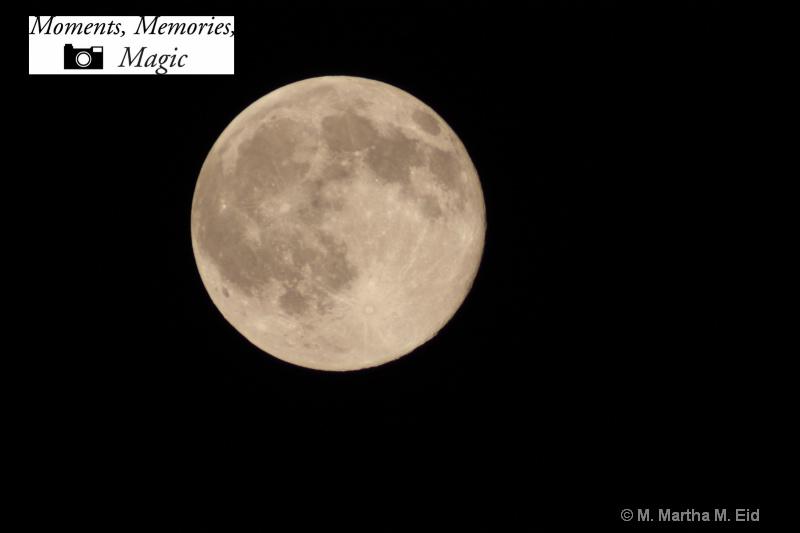 - ID: 10748384 © M.  Martha M. Eid