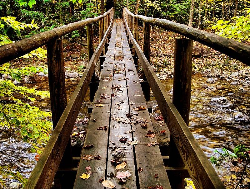 Autumn footprints