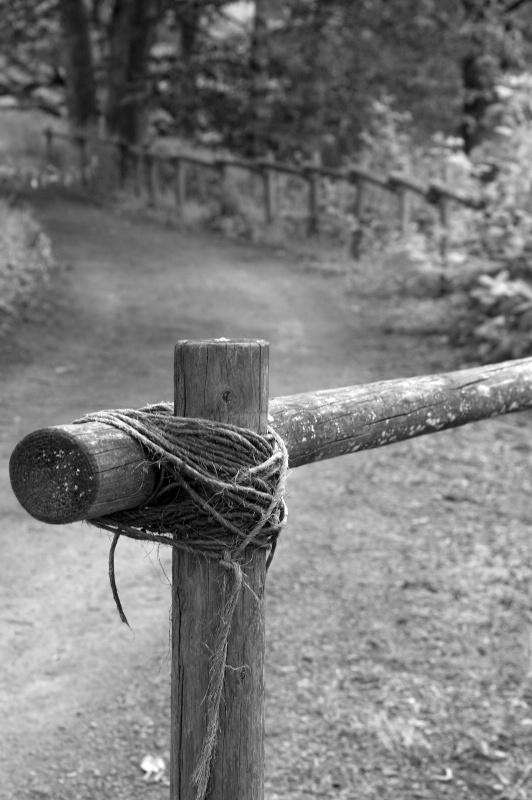 B&W Fence Post - ID: 10786050 © cari martin