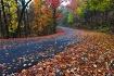Roadside Palette