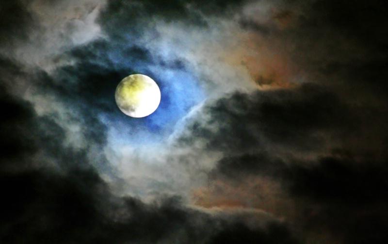 Still of the Night - ID: 10805843 © Karen E. Michaels
