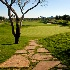© gwen feasel PhotoID # 10821289: Golf Course Path