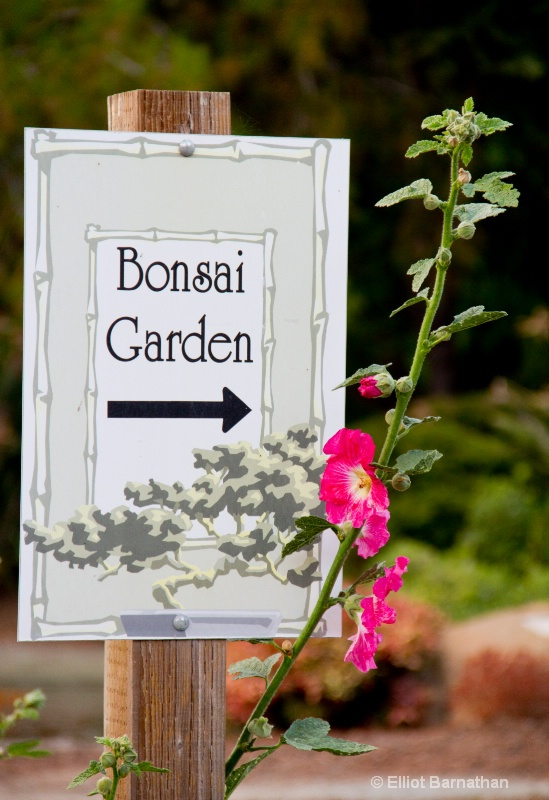 Bonsai Garden - ID: 10837241 © Elliot S. Barnathan