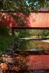 Cabin Run Reflect...