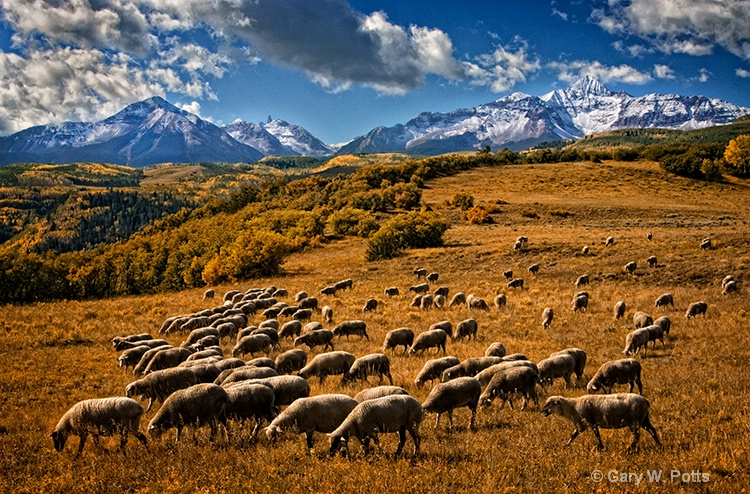 Pastoral Paradise - ID: 10877360 © Gary W. Potts