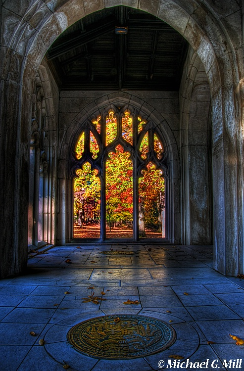 Natures Stained Glass Window