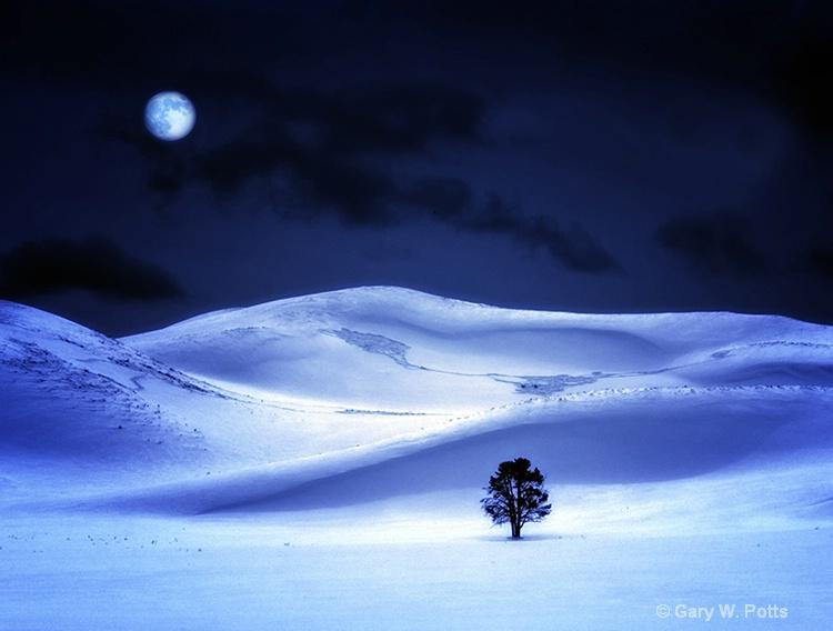 Yellowstone Midnight - ID: 10888552 © Gary W. Potts