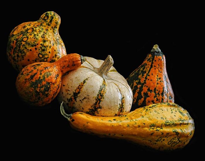 Spicy Gourds