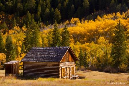 Cabin on Golden Land