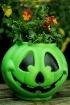 pumpkin flowerpot