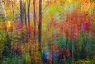 Fall trees with r...