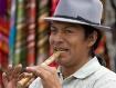 Ecuadorian Flute ...