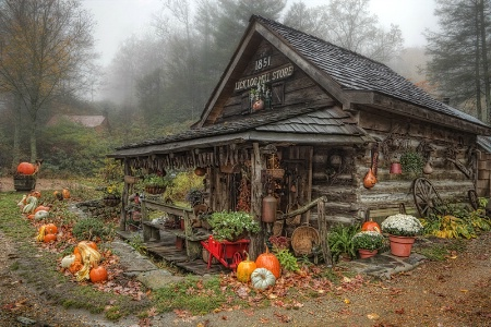 Country Charm Treat