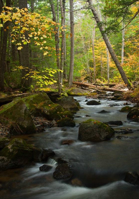 Fall Stream - ID: 11012746 © Gerald L. Tomanek