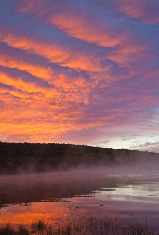 Misty Dawn - ID: 11012752 © Gerald L. Tomanek
