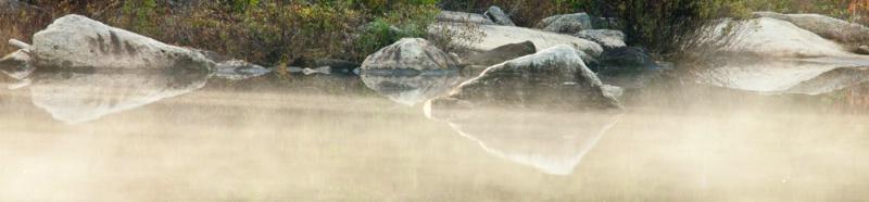 Shore in Golden Mist - ID: 11012753 © Gerald L. Tomanek
