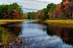 Maine Colors