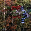 Japanese Garden S...