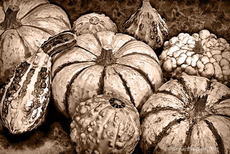 Vintage Autumn Still Life