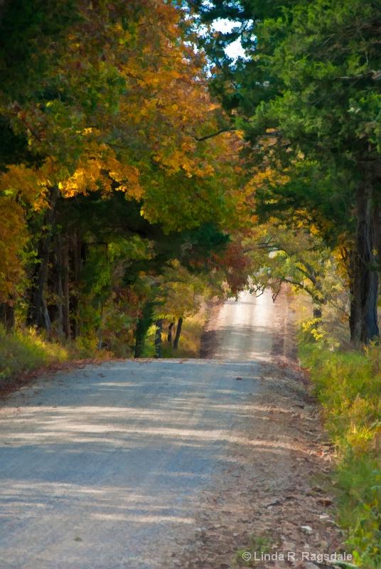 Fall Road - ID: 11080092 © Linda R. Ragsdale