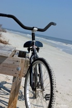 -Ready for a Ride on the Beach-