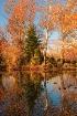 Afton Pond