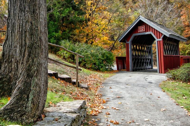 Footbridge Over Whiskey Creek - ID: 11100535 © Carolyn Keiser