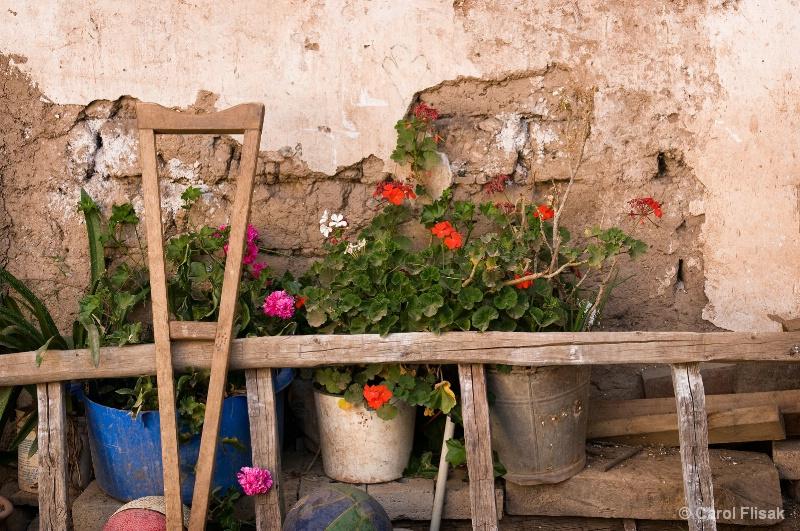 Signs of Life ~ Cusco, Peru - ID: 11129899 © Carol Flisak