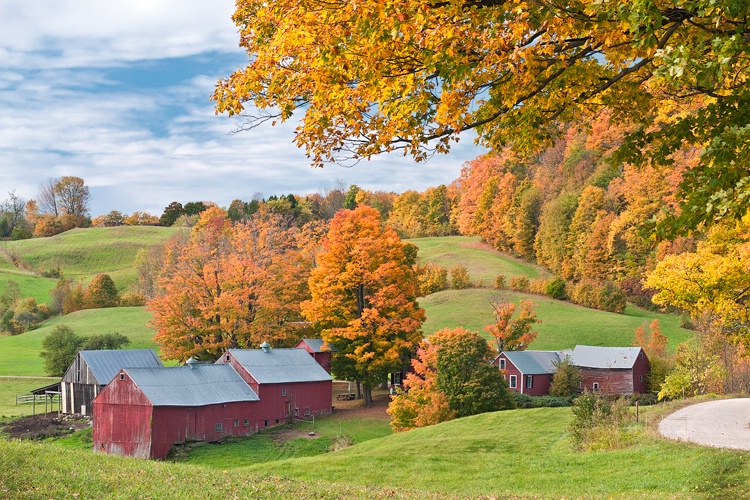 Jenne Farm, Windsor County, VT - ID: 11148101 © george w. sharpton