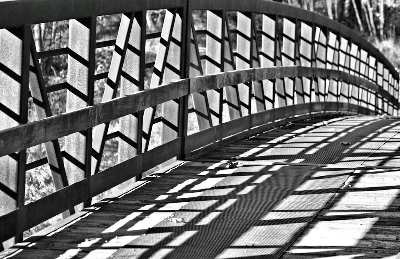 Lines, Curves and Shadows