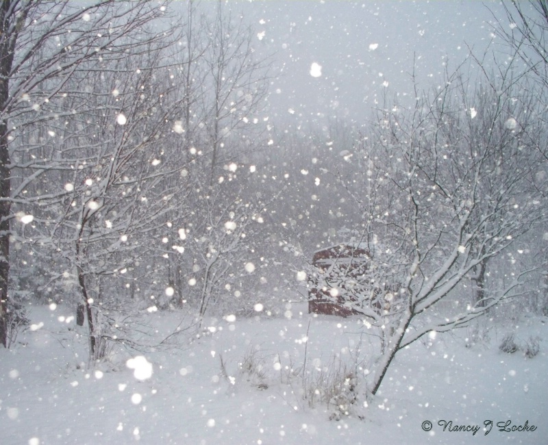 First Snowstorm - resubmit