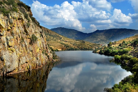 Douro Valley V - Port Wine Region