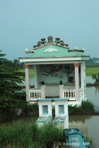graves and tombs in rice paddies