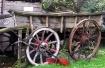 Old  Cider Wagon