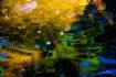A Sinking Monet