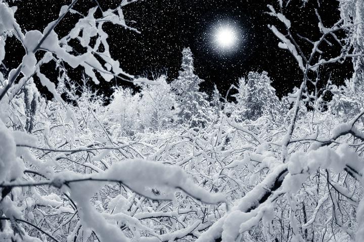 A Distant Star - ID: 11222975 © Eric Highfield