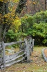 Fence Line.