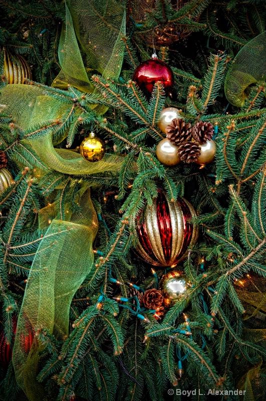 Decorating the Christmas Tree....