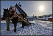 Winter in Siberia