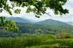 Smoky Mountains N...