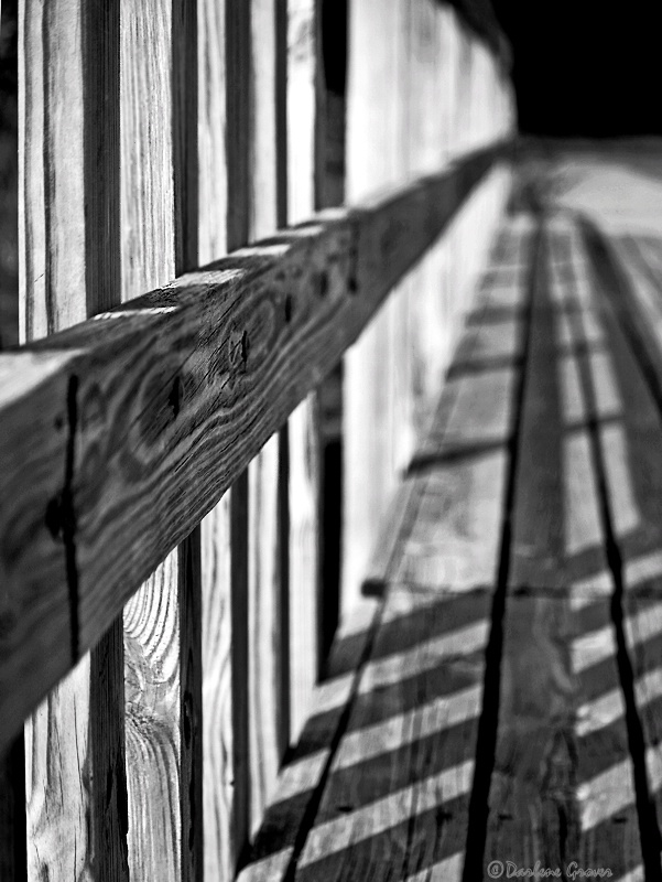 Lines and Shadows