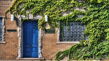 Blue Door and Ivy
