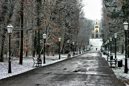 Maksimir in Winter