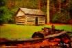Rustic Farm Shelt...