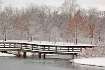 ~Bridge in Winter...