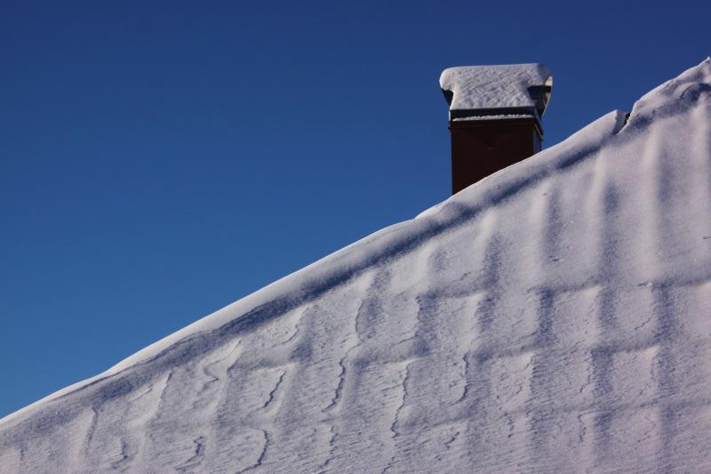 Winter Texture