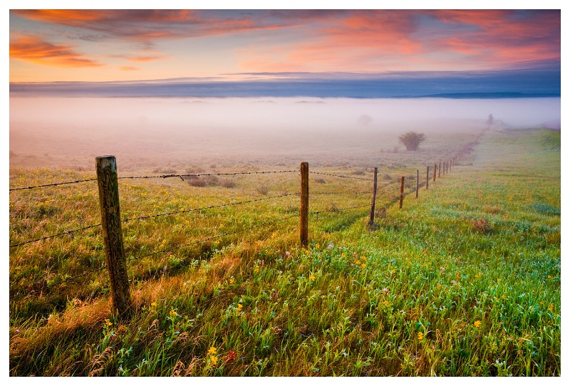 Fog on the Prairie, SW Saskatchewan - ID: 11301596 © Jim D. Knelson