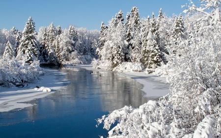 Winter's Artistry