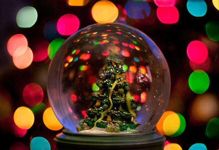 Oh Christmas Tree - ID: 11323519 © Eric Highfield