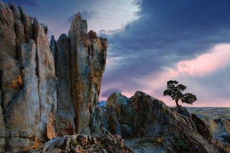 Moon Rocks NV